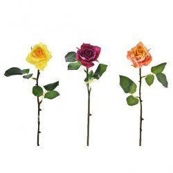 Selyemvirág rózsa, tüskével