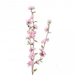 Rózsaszín barackág