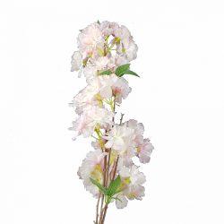 Babarózsaszín cseresznyevirág