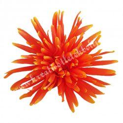 Pók krizantém fej, élénk narancssárga, kb. 13 cm