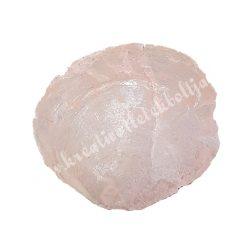 Kagylóhéj, rózsaszín, 2 méret