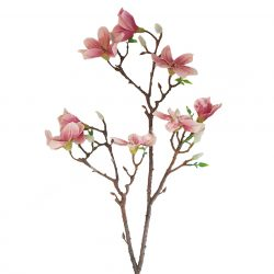 Magnólia, rózsaszín, 89 cm