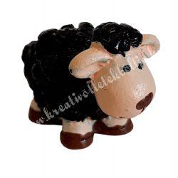 Fekete bárány