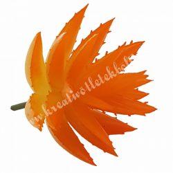 Beszúrós narancssárga pozsgás, kicsi