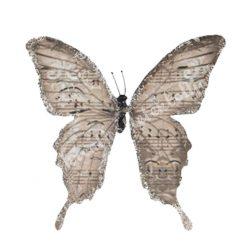 Pillangó csipesszel, glitteres papír, hosszúkás, 9x11 cm