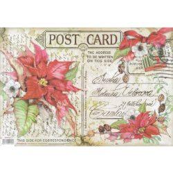 Rizspapír, Post Card, 48x33 cm