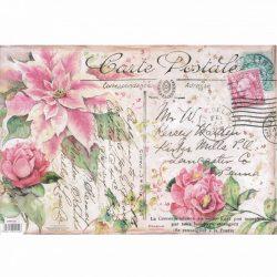 Rizspapír, Carte Postale, 48x33 cm