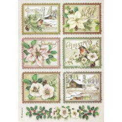 Rizspapír, Téli botanikus kártyák. A4 (4342)