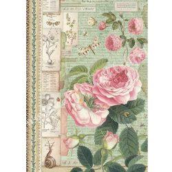 Rizspapír, Botanikus angol rózsa csigával, A4 (4359)