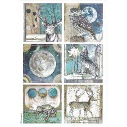 Rizspapír, kozmosz állatokkal, A4