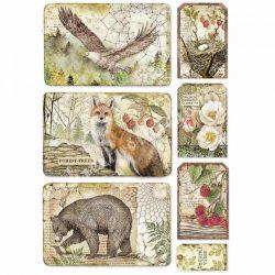Rizspapír, Sas, medve, róka keretek, A4 (4427)