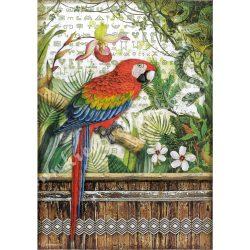 Rizspapír, Amazónia - Papagáj, A4 (4531)