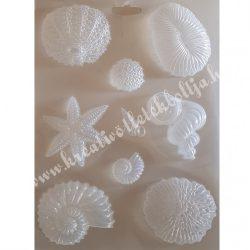 Lágy PVC öntőforma, kagylók, A4