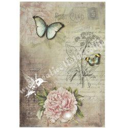 Rizspapír, Pillangók, kolibri, virág, A4 (R1065)