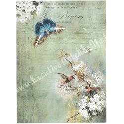 Rizspapír, Pillangó, madarak, virágok, A4 (R976)