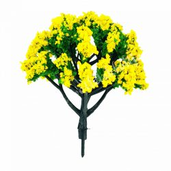 Sárga hibiszkusz fa, 8 cm