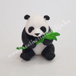 Kicsi panda bambusszal
