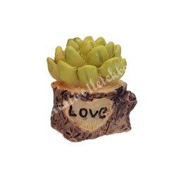 Mini kövirózsa cserépben, Love felirattal