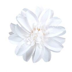 Betűzős dália, fehér, 12 cm