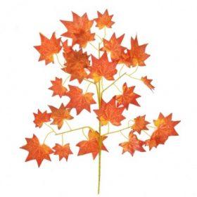 Őszi selyemvirágok, levelek