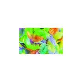 Színes madártoll