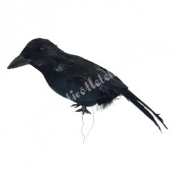 Varjú, fekete, 14x6 cm
