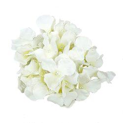 Hortenzia fej, fehér, 14 cm