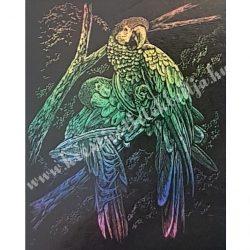 Karckép gravírozó készlet karctűvel, Papagájok, szivárvány, 20x25 cm