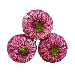 Betűzős gipsz szalmarózsa, lila
