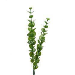 Eukaliptusz ág, kb, 42 cm