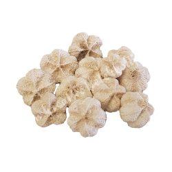 Fokhagymatermés, natúr, kb. 30 gr/csomag