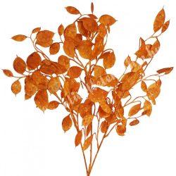 Pénzvirág ág, világosbarna, 21x68 cm