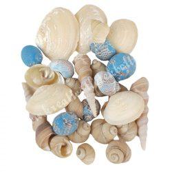 Kagylók, csigaházak, natúr-égkék-gyöngyház, kb. 80 gr/csomag