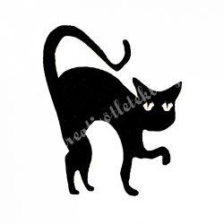 Filc macska