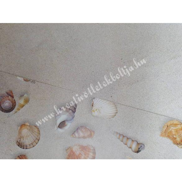 Kagyló mintás karton, egyoldalas