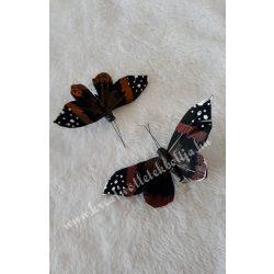 Mintás pillangó