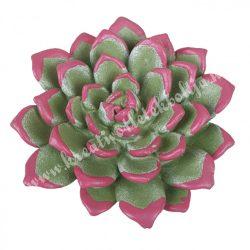Polyresin pozsgás, zöld-rózsaszín, 8x2,5 cm