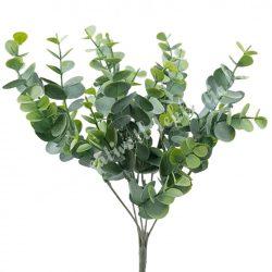 Eukaliptusz bokor, hamvas zöld, 34 cm