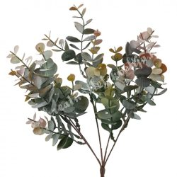 Eukaliptusz bokor, lazacos, 34 cm