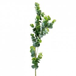 Eukaliptusz ág, hamvas zöld, 74 cm