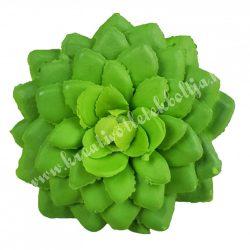 Kövirózsa, zöld, 6,5x2,5 cm