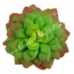 Kövirózsa, zöld-bordó, 6,5x2,5 cm