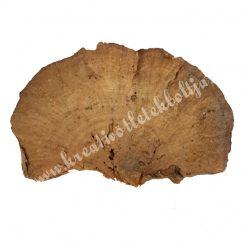 Taplógomba, natúr, 6-8 cm