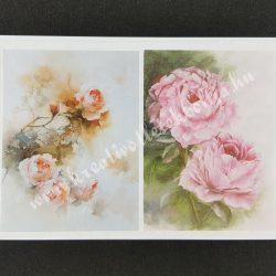 Rizspapír, pünkösdi rózsák
