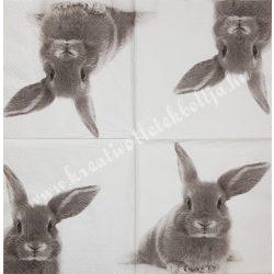 Szalvéta, háziállatok 11., szürke nyuszi, 33x33 cm