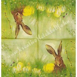 Szalvéta, háziállatok 9., húsvét, nyuszi, 25x25 cm
