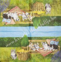 Szalvéta, kutya,macska, 32x32 cm, 1 darab