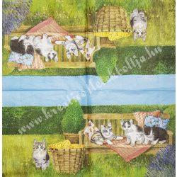 Szalvéta, kutya, macska 1., 33x33 cm