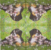 Szalvéta, kutya, macska, 33x33 cm, 1 darab