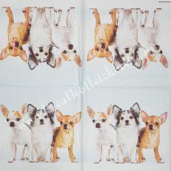 Szalvéta, kutya macska 33x33cm (27)